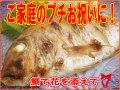 食卓に華を添える、天然真鯛(150〜200g)!
