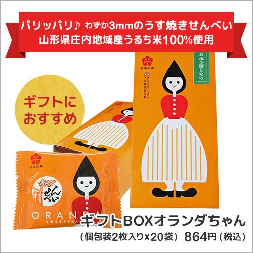 ギフトBOXオランダちゃん(個包装2枚入り×20袋)