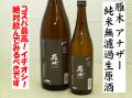 雁木がんぎ anotherアナザー(もうひとつの・・)純米無濾過生原酒 日本酒通販 日本酒ショップくるみや