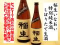 鳩正宗 稲生いなおい 特別純米酒 しぼりたて生酒 日本酒通販 日本酒ショップくるみや