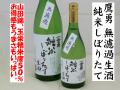 鷹勇 純米しぼりたて無濾過生酒 地酒通販 日本酒ショップくるみや