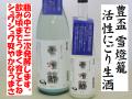 豊盃 活性にごり生酒 雪燈籠 日本酒通販 日本酒ショップくるみやお勧めのスパークリング日本酒です。