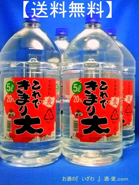 本格むぎ焼酎20° これできまり大 20度 5000ml(ケース4本) ペットボトル 鹿児島県 若松酒造