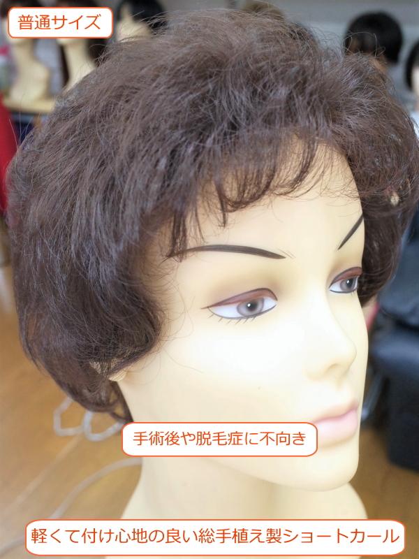 フルウィッグ 人工毛 ミセス・シニア向 ショートカール 総手植え製  hm33s 医療用にも最適