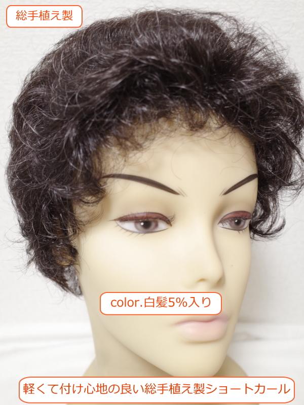 フルウィッグ 人工毛 ミセス・シニア向け 総手植え製  ショートカール 白髪入り n700s 医療用にも最適