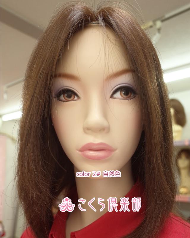 フルウィッグ 人毛 かつら ワンレンロング 20センチ  総手植え製 sc-hw02 ミセス 医療用にも最適