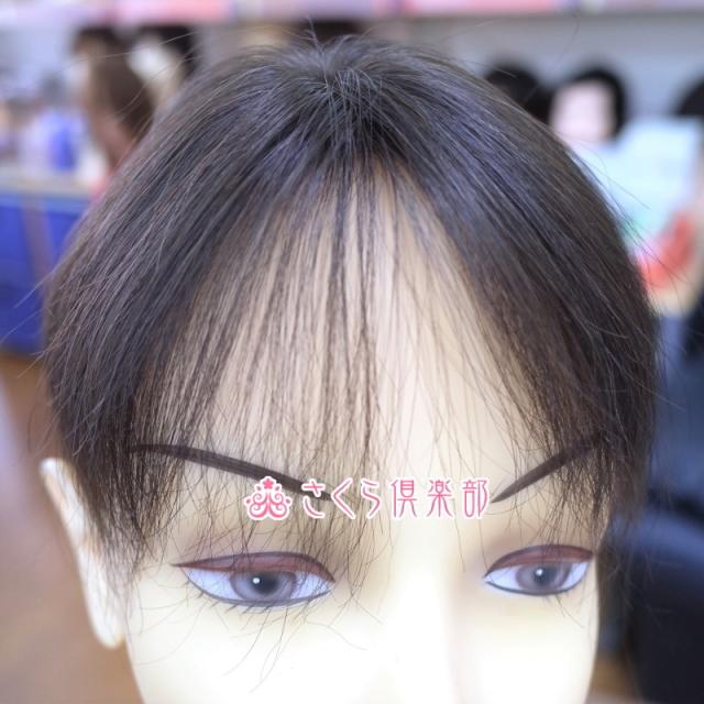 人毛部分ウィッグ Sサイズ 特殊人工皮膚付き 男女兼用 医療用にも最適 top-01t