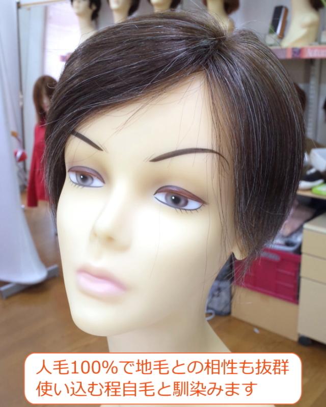 人毛部分ウィッグ 左分け 白髪10% Lサイズ男女兼用 医療用にも最適 top-104s
