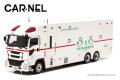 予約品 8月頃 ミニカー CARNEL(カーネル)  レジンモデル 1/43 CN431809 いすゞ ギガ 2018 東京消防庁消防救助機動部隊特殊救急車 スーパーアンビュランス 限定450台 4580198722879