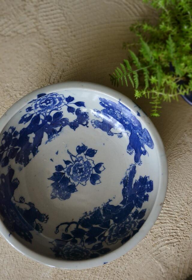 染付印判獅子牡丹紋鉢 直径187mm
