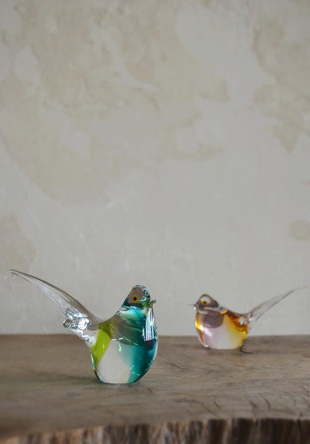マルティグラス 鳥 ペア
