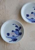 盃菊紋皿 和食器