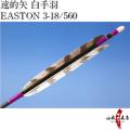 遠的矢 白手羽 EASTON 3-18/560
