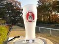 ビールがおいしい☆泡立ちビールグラス☆黒田官兵衛キャラクタープリント