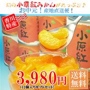 小原紅みかんの缶詰!通信販売店!新鮮市場【産直あきんど】