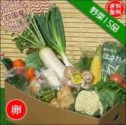四国の野菜15品+卵10個