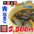 瀬戸内海産 青ナマコ1kg