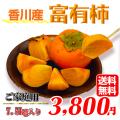 富有柿の通販