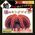 明石のジャンボ大タコ・たこ祭り!