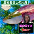 オリーブハマチの通販/香川県 お取り寄せ