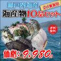 鮮魚店がお勧めする通販鮮魚♪瀬戸内海の海産物を販売します!