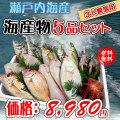 濱田鮮魚が産地直送で新鮮な魚介類をお届け致します♪