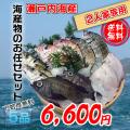 海の幸、鮮魚の詰め合わせ、瀬戸内海産