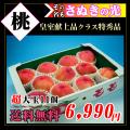 香川産の桃【大糖領】通販/丸亀市飯山町