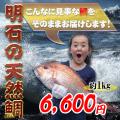 鯛の通販 鯛の販売お歳暮、ギフト、お取り寄せ