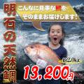 瀬戸内海産の鯛の通販明石の天然鯛。