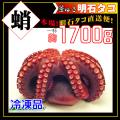 【冷凍品】釜茹で冷凍タコ/瀬戸内海産/明石のタコ