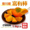 秋の味覚 富有柿