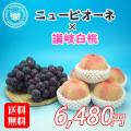 飯山の桃と香川産のニューピオーネの詰め合わせ