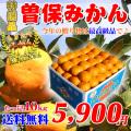 香川県産/曽保みかんの通販。販売店。