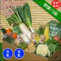 四国の野菜15品+牛乳2本