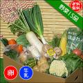 四国の野菜15品+卵10個+牛乳1本