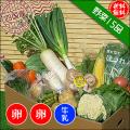 四国の野菜15品+卵20個+牛乳1本