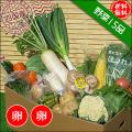 四国の野菜15品+卵20個