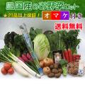 四国の野菜21品セット
