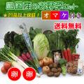 四国の野菜の詰め合わせ21品+卵20個