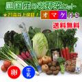 四国の野菜の詰め合わせ21品+卵10個+牛乳1本
