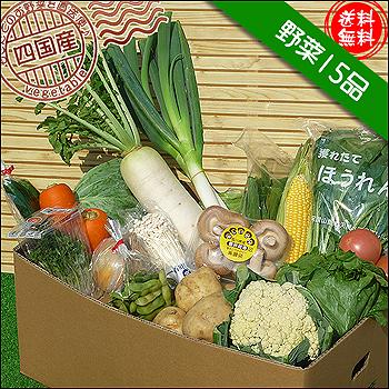 四国の野菜15品
