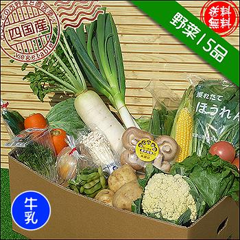 四国の野菜15品+牛乳1本