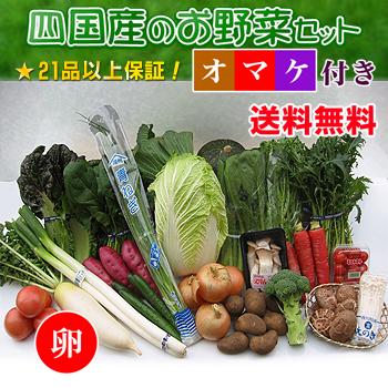 四国の野菜の詰め合わせ21品+卵10個