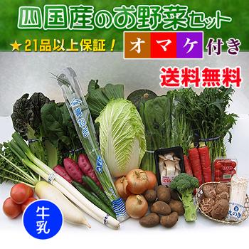 四国の野菜の詰め合わせ21品+牛乳1本