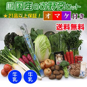 四国の野菜の詰め合わせ21品+牛乳2本