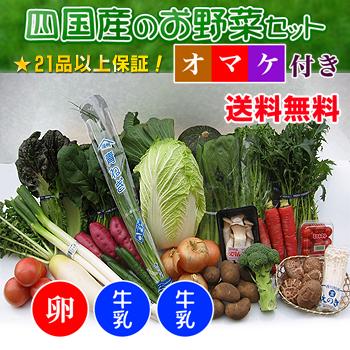 四国の野菜の詰め合わせ21品+卵20個+牛乳1本