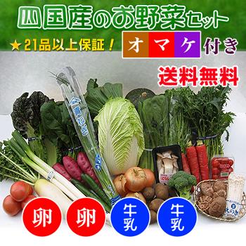 四国の野菜の詰め合わせ21品+卵20個+牛乳20本