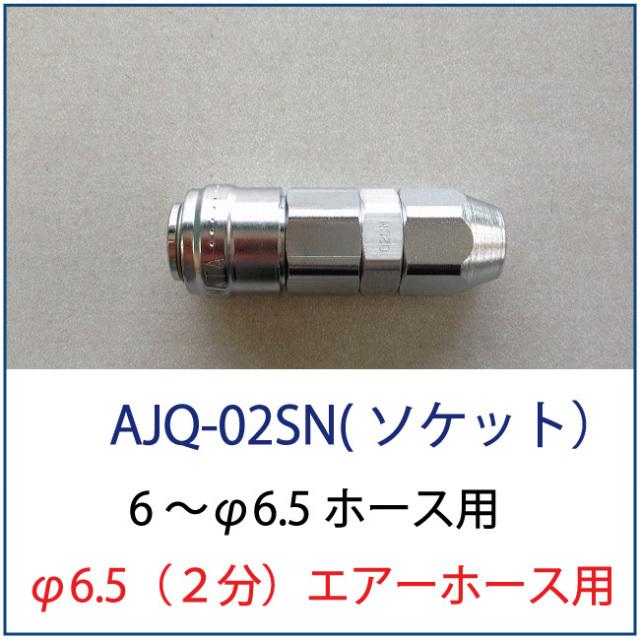アネスト岩田AJQ-02SN