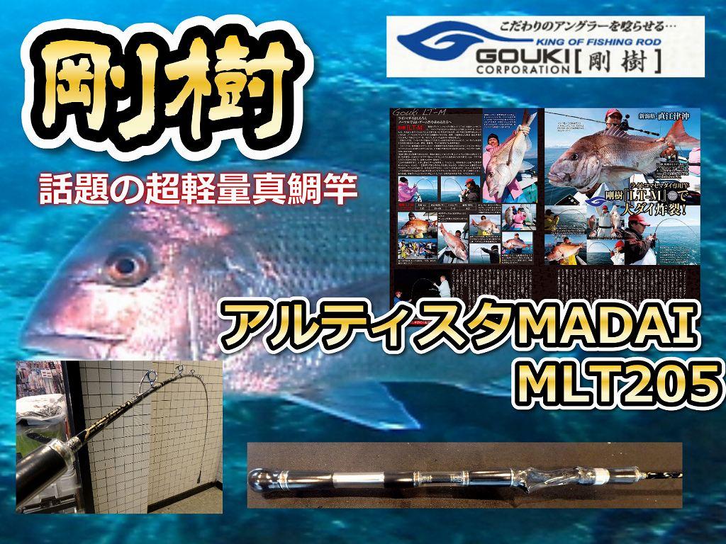 剛樹  アルティスタMADAI  LTM 205 話題の超軽量コマセ真鯛モデル (送料無料)
